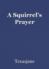 A Squirrel's Prayer