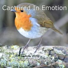 Captured In Emotion