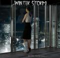 Winter Storm in Tokyo