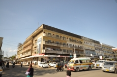 Bwana Fisi