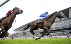 Horseracing Ramblings