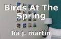 Birds At The Spring