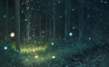 Lost Enchantment