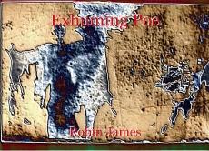 Exhuming Poe