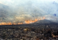 Wildfire Creates Its Own Weather
