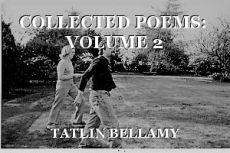 COLLECTED POEMS:  VOLUME 2