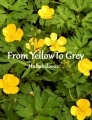 From Yellow To Grey