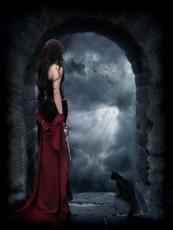 The Vampire Slayer Chronicles: Zafire's Revenge