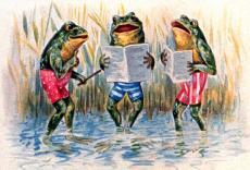 A Froggy Romance