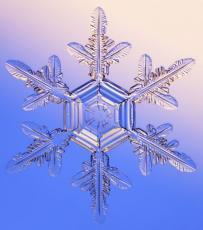 Snowflake Haiku