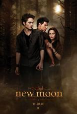 Bella's Wedding to Jacob (Edwards P O V), short story by forbidden