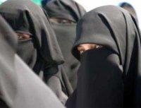 Muslim France ?