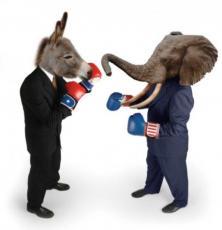 Donkey and Elephant Show