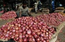 The Indispencible Onion