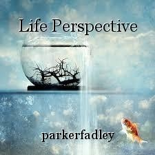 Life Perspective