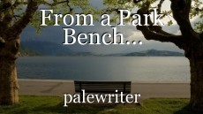 From a Park Bench...