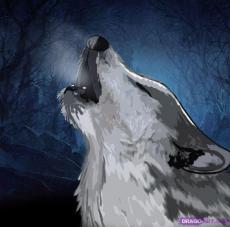 Howlingwolf214