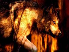 Valenwolf