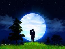 Moonlighthoneybunny