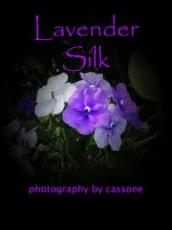 Lavendersilk
