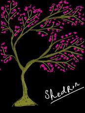 shedron