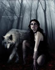 Velvet Wolf
