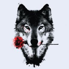 Wolfethewolf