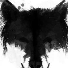 M.S Wolf