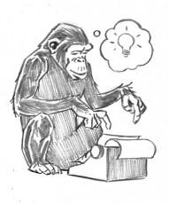 Dyslexic Monkey with a Typewriter