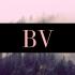 BV Lawrence