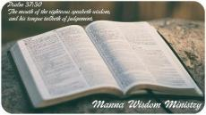 Manna Wisdom