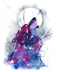 Galacticmoonwolf