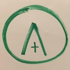 the alex organisation