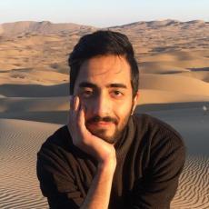 Ramin Dara