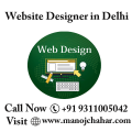 websitedesignerindelhi