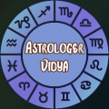 AstrologerVidya