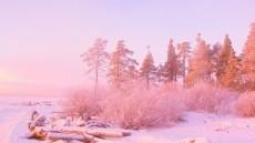 pink rain cloud