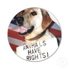 animals have rights
