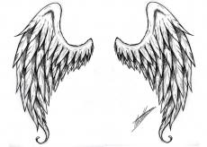angelwings11