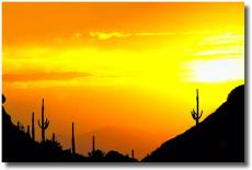 desertsun