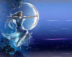 Artemis Nightshade