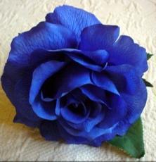 bluerose1227