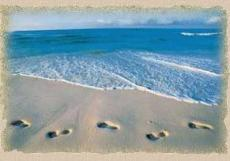 Footprints on the Shore