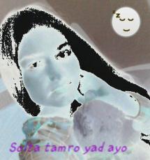 MayTavi