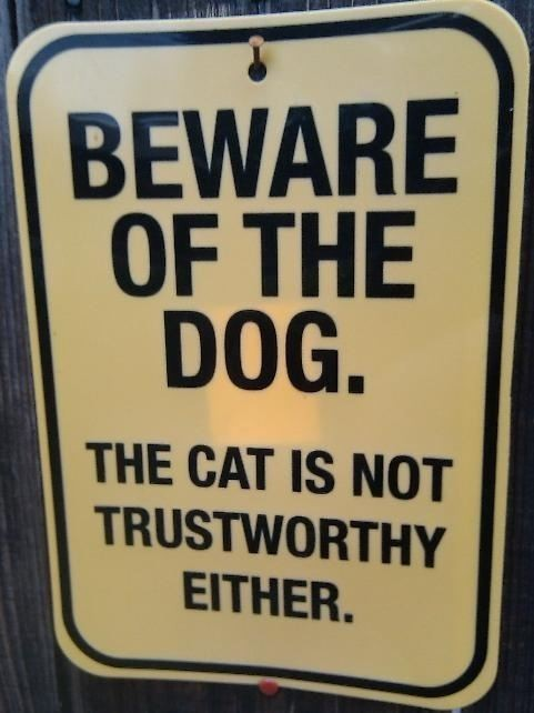 funny-quotes-sayings-dog-cat-trust.jpg