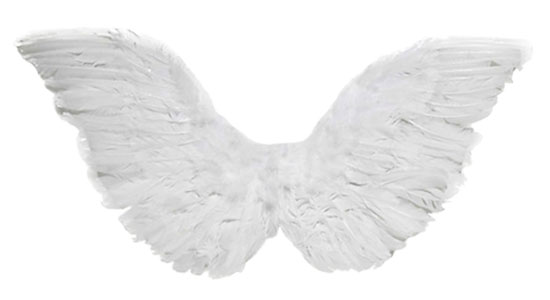 child-feather-angel-wings.jpg