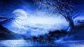 moonlight ave