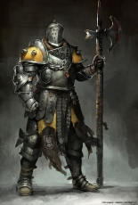 Medieval Fantasy Knights