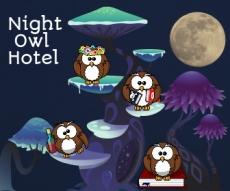 Night Owl Hotel