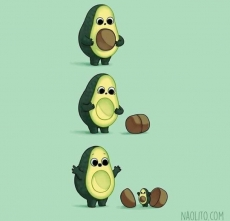 Diary of a Browning Avocado